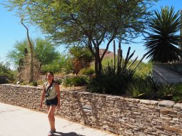 Debbie with some palo verde