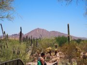 Camelback Mountain in the distance